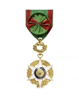 Médaille Officier de l'Ordre du Mérite Agricole Bronze Doré