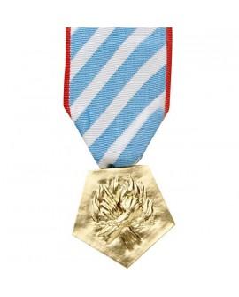 Médaille Interné Résistance