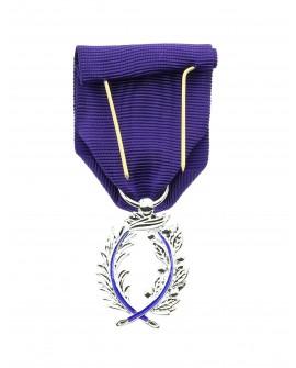Médaille Chevalier de l'Ordre National des Palmes Académiques Bronze