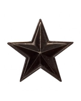 Etoile Ordonnance Bronze