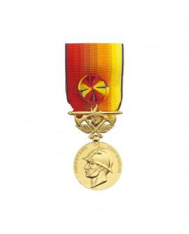 Médaille Honneur des Sapeurs Pompiers Services Exceptionnels Vermeil