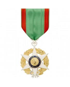 Médaille Chevalier de l'Ordre National du Mérite Agricole Bronze Argenté