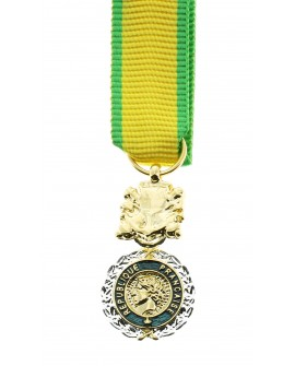 Médaille Militaire Bronze Argenté