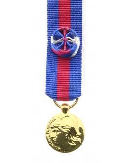 Médaille SMV Bronze Doré