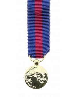 Médailles SMV Principales décorations Bronze