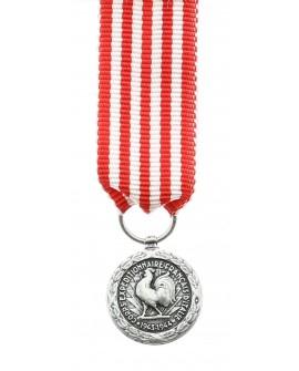 Médaille Commémorative Italie Bronze