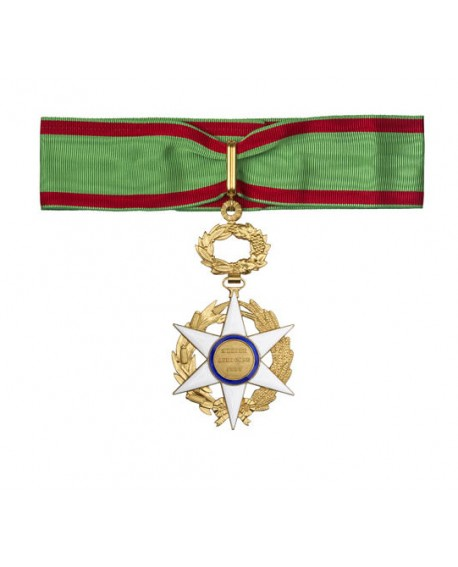 Médaille Commandeur de l'Ordre du Mérite Agricole Bronze Doré