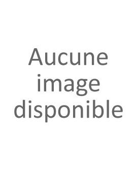 Agrafe Atlantique Argent